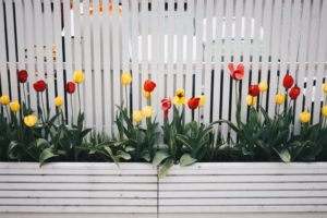 The Best Fence Companies in Pasadena